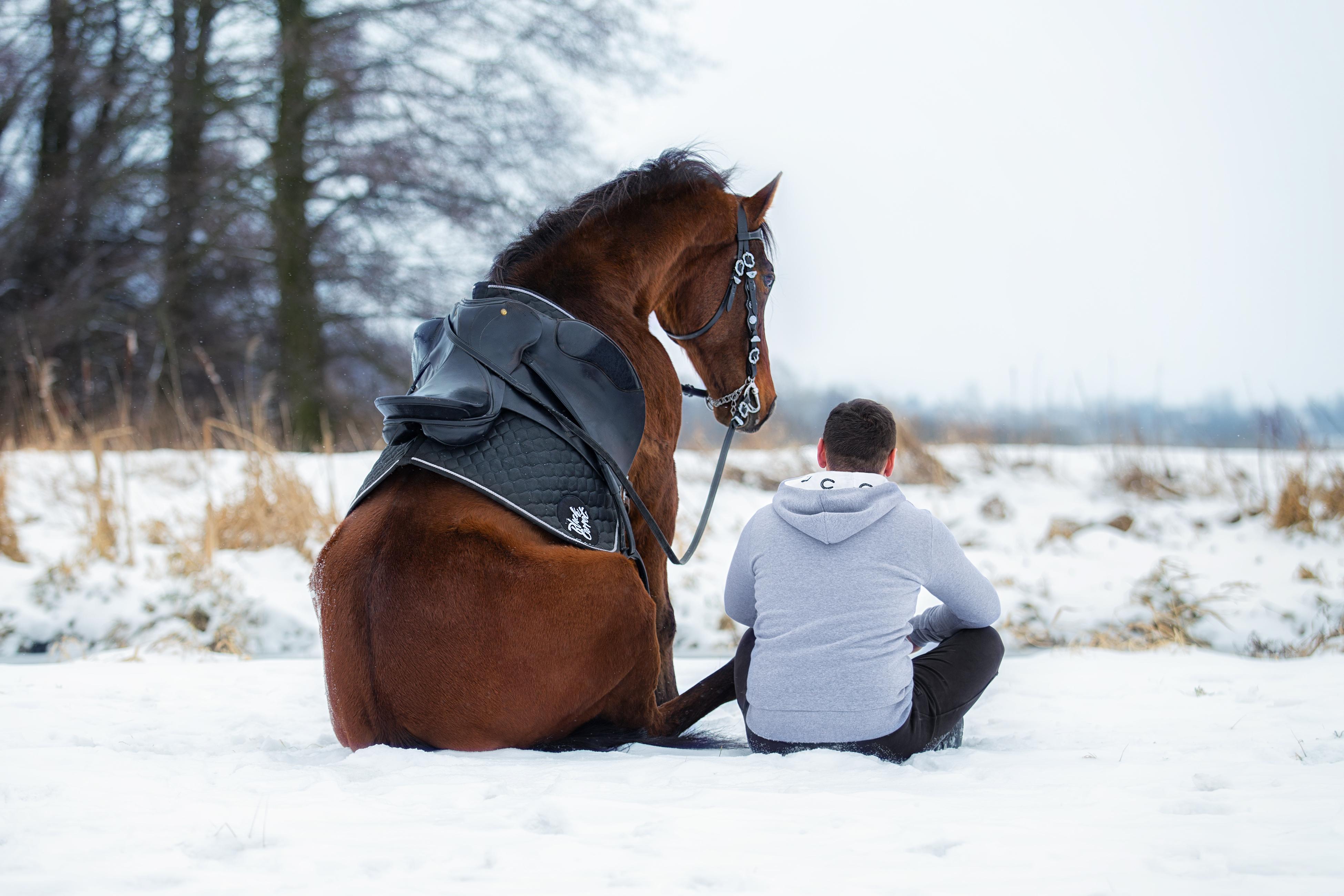 Paweł Jachymek Piotr Dejneka Black Carrot koń horse siedzi sitting